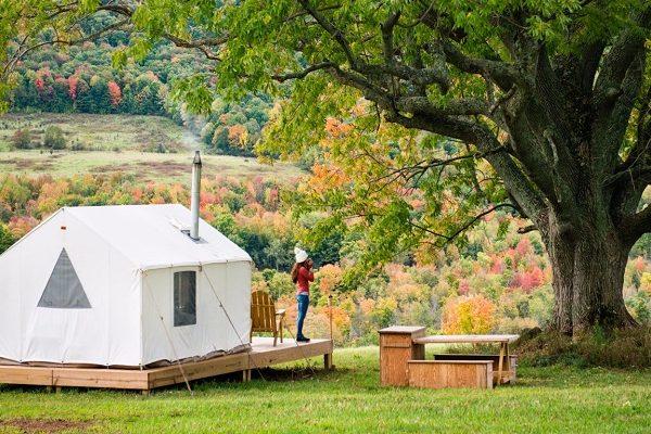 Campsite business plan