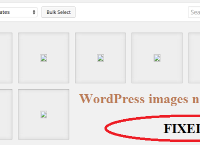 wordpress images not displaying