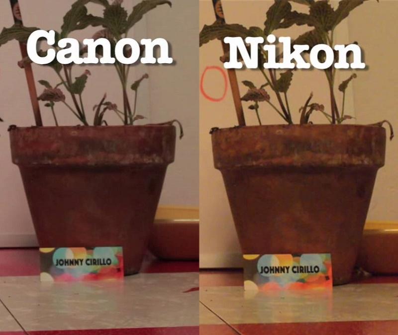 Canon 6D vs Nikon D750 photo