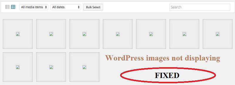 wordpress images not displaying